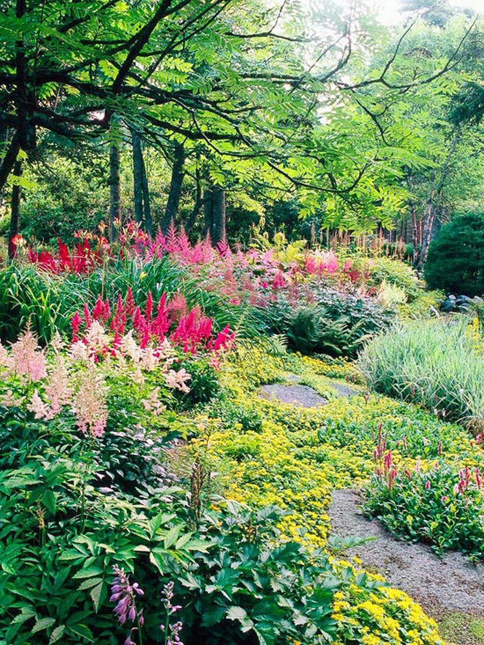 Haven der trives og er smuk i skyggen gardening pinterest beautiful and colorful garden with flowers plants and trees izmirmasajfo