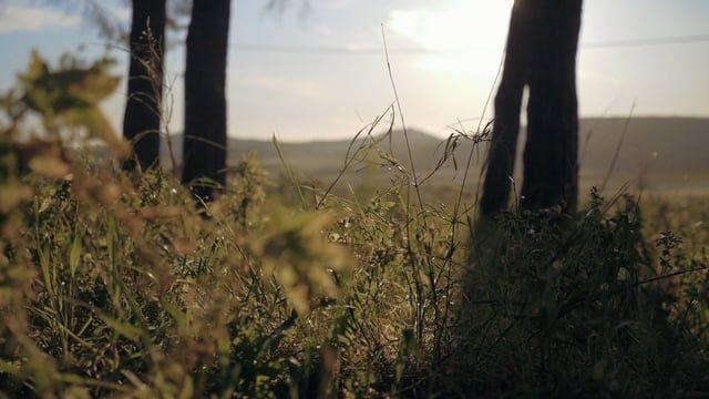 Montagna Grande, Trapani - Sicilia. Una bella giornata di primavera fuori porta.  Un video di Marco Fazio e Monica Lombardo. Girato con Lumix G7 - 12-35mm - Slider Konova…