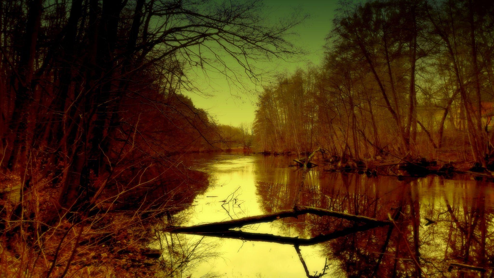 enchanted. by Salo Gwyn on 500px