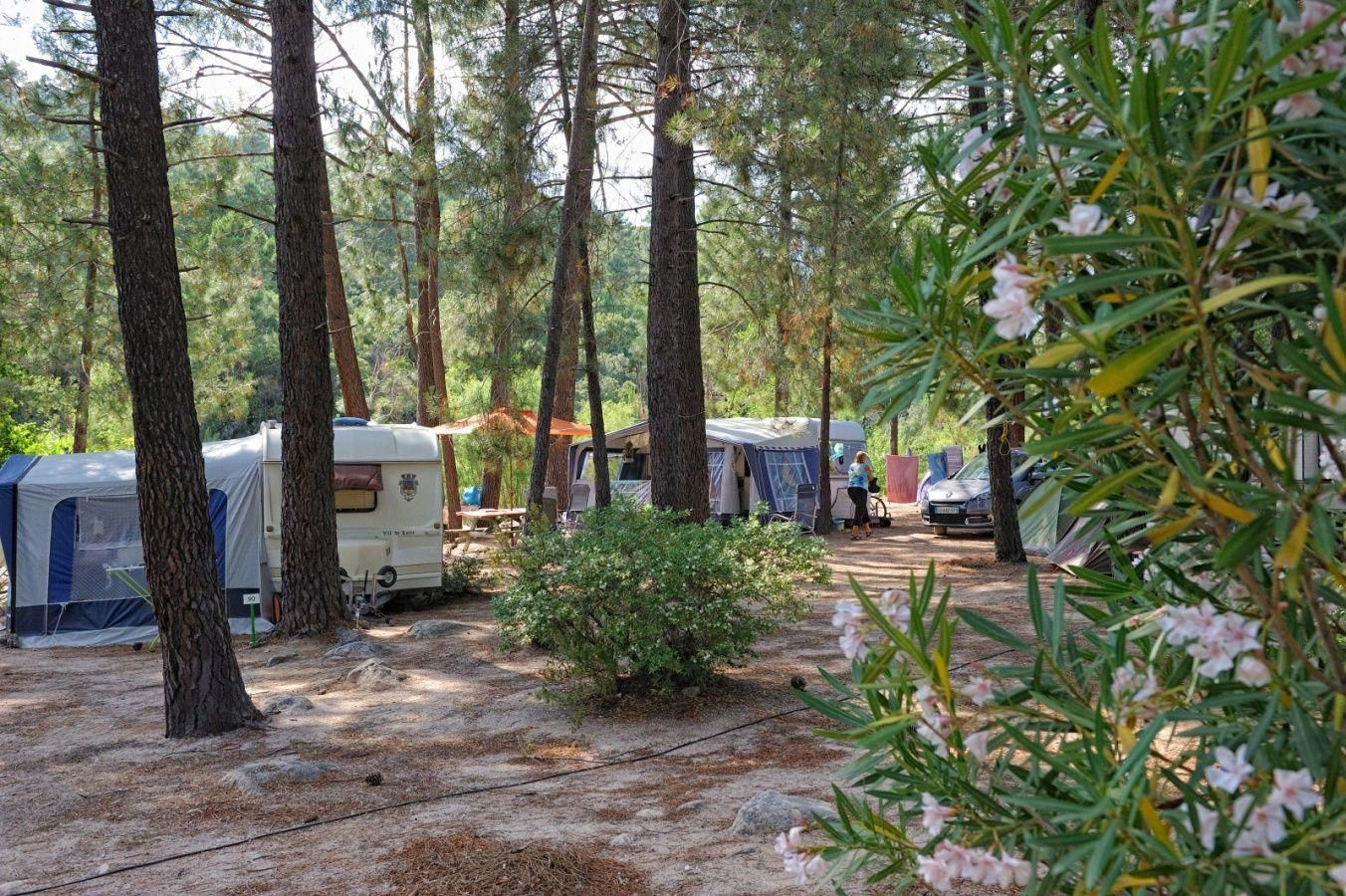 Camping On The Beach Near Me #CampingInTheRain id ...
