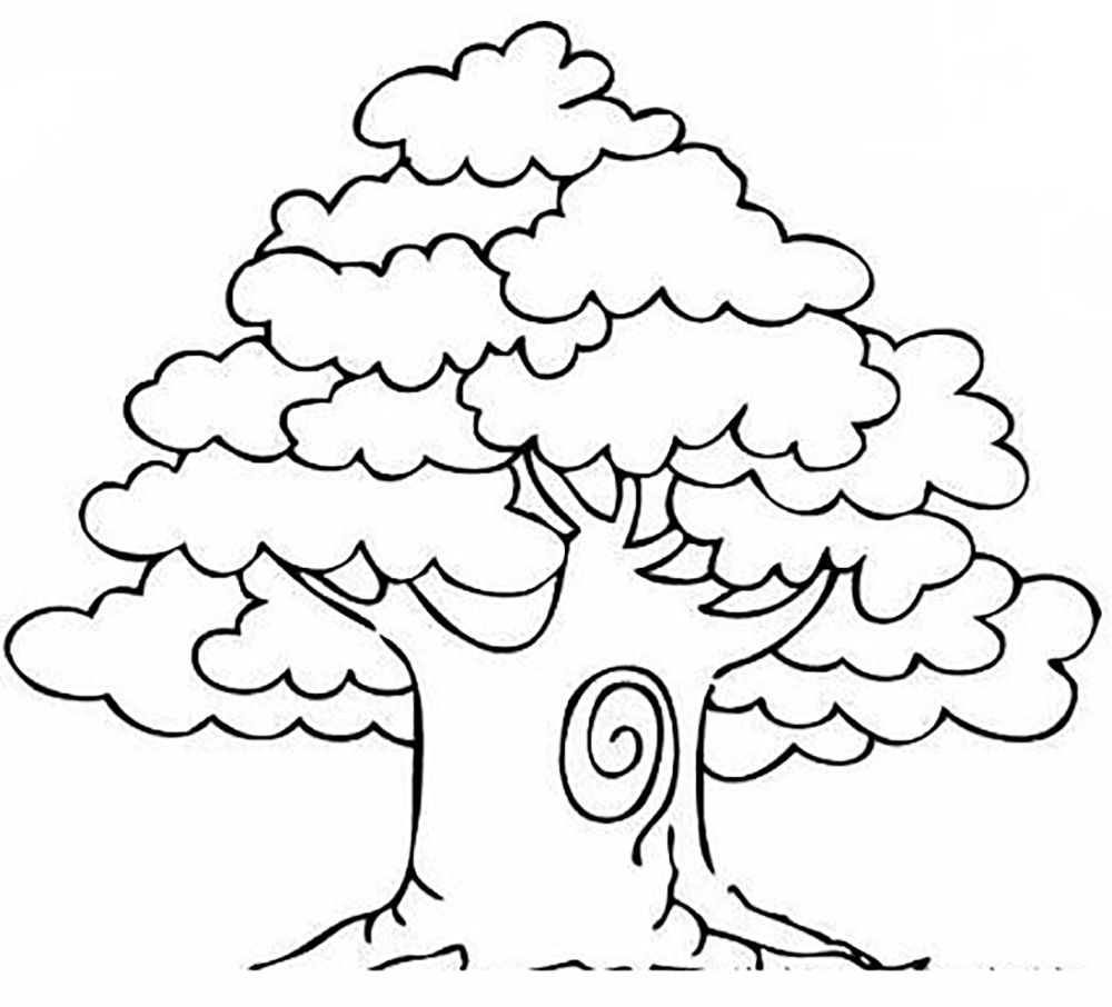 Mango Tree Trees Coloring Pages Pinterest Kids Net Big Tree Coloring Page