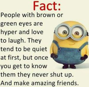 minion memes   google search this is me pinterest