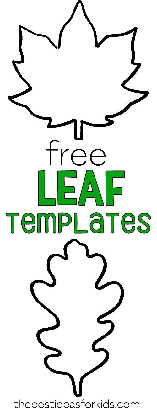 Leaf Template #leafcrafts