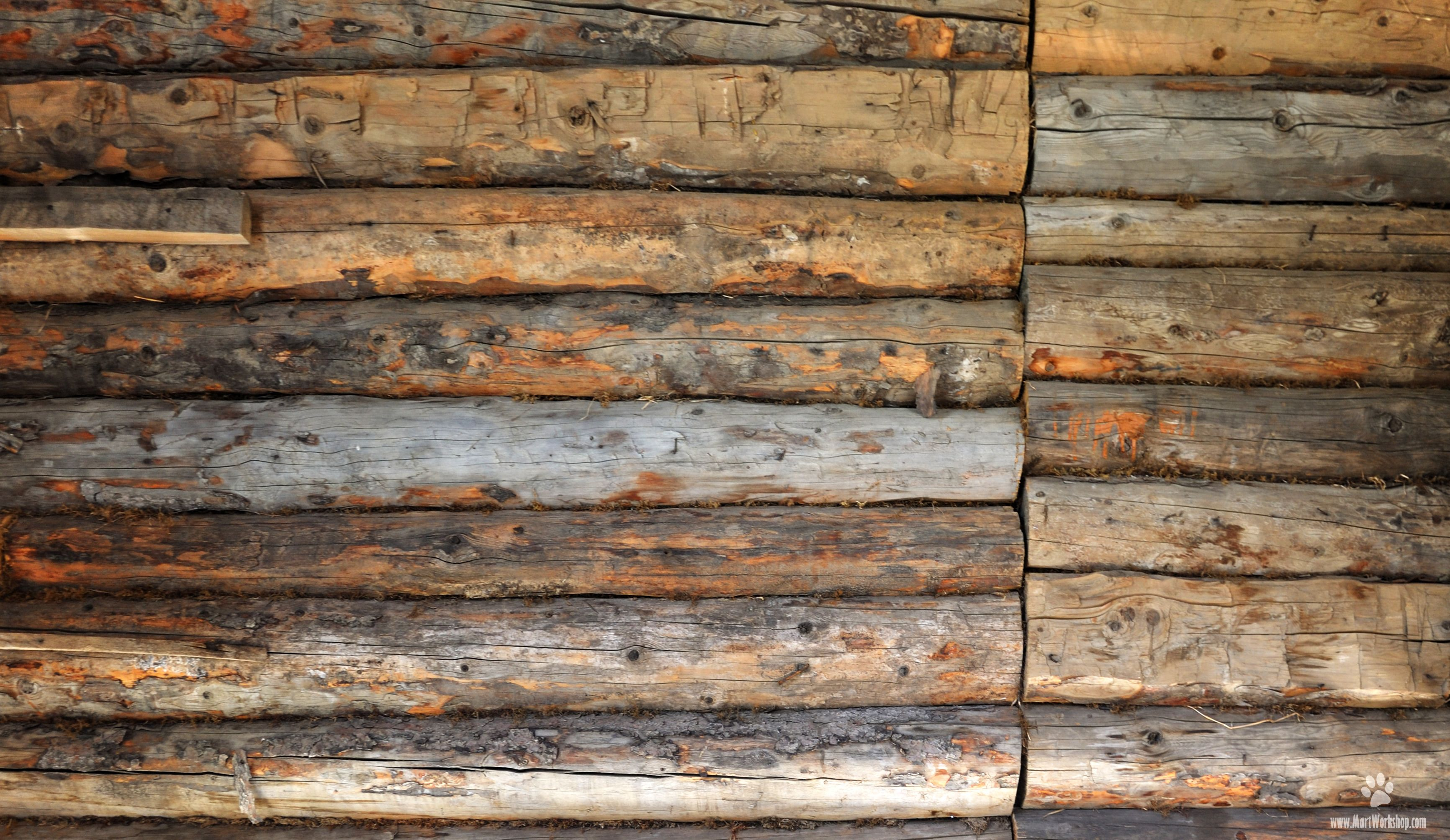 Log Wallpaper With The Texture Of Logs ~ Wood wall texture g textures pinterest
