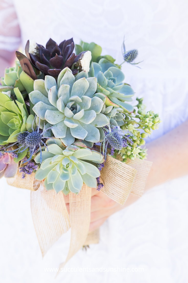 This is the ultimate resource for your succulent wedding