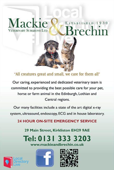 Mackie Brechin Vets In Kirkliston Your Pet Central Region Veterinary Surgeon