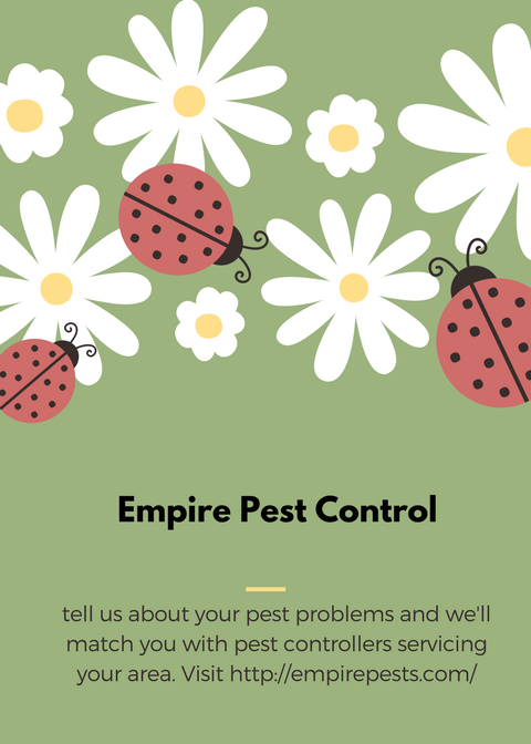 Pin by Empire Pest Control on Empire Pest COntrol Pest