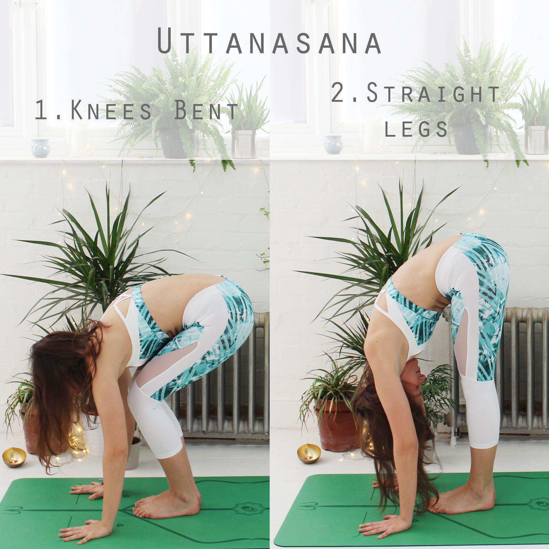 Opciones para realizar Uttanasana en el Saludo al Sol