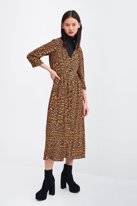 Image 1 Of Animal Print Dress From Zara Print Dress Leopard Print Dress Print Clothes