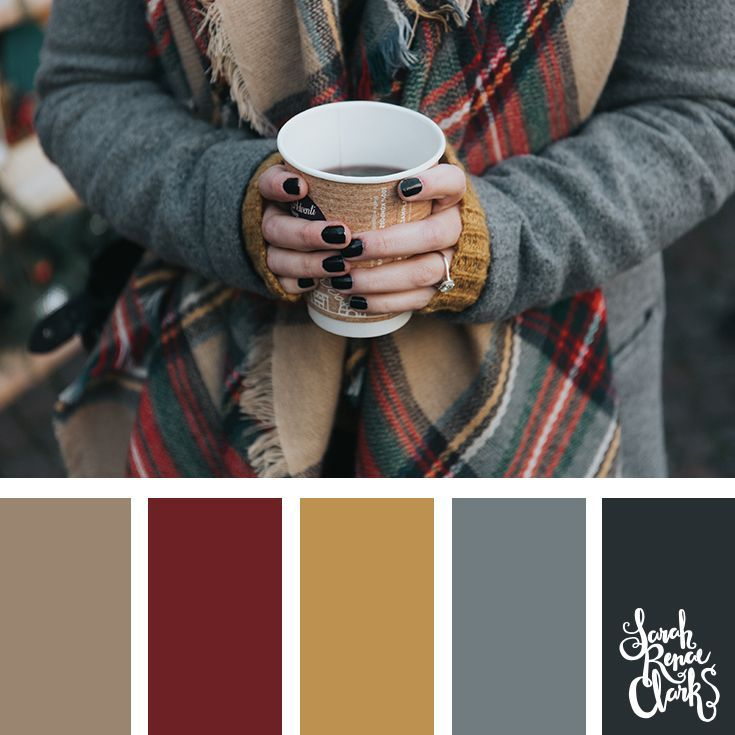 25 Winter Color Palettes | Inspiring color schemes by Sarah Renae Clark #fallcolors