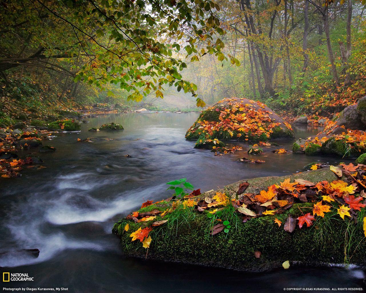 Photo Of The Day Autumn Landscape Landscape Landscape Photography