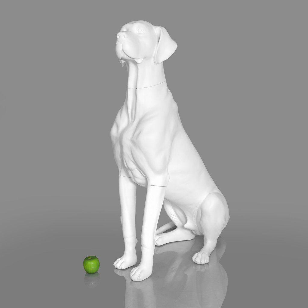 Great Dane Dog Mannequin Matte White Great Dane Dogs Dane Dog