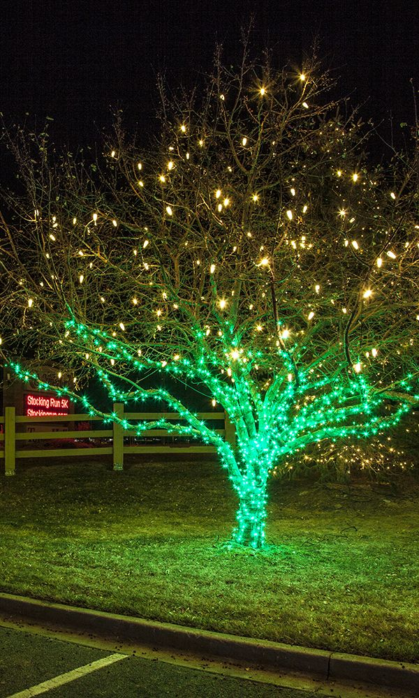 Christmas Light Installation And Hanging Services By Swingle Your  Professional Christmas Light Hanging Business For Metro Denver.