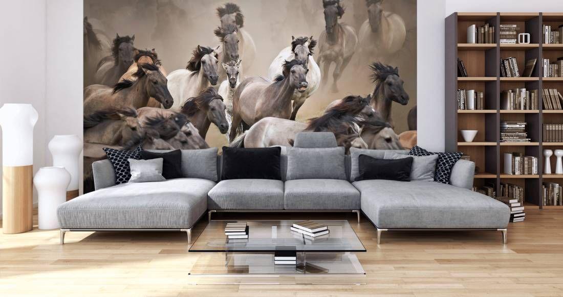 Tapeten im Wohnzimmer; Fototapete «Wildpferde» DD102158 - tapeten wohnzimmer