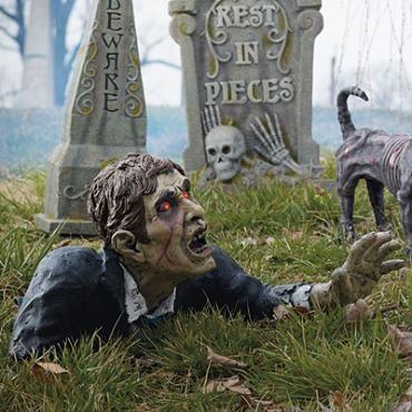 Outdoor Halloween · Standing Zombie Dog