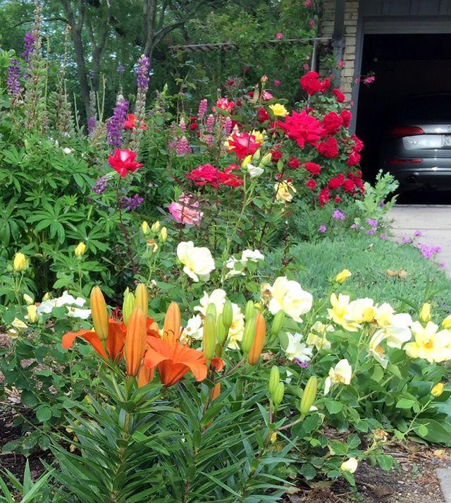 Beautiful Combinations In Wisconsin | Fine Gardening