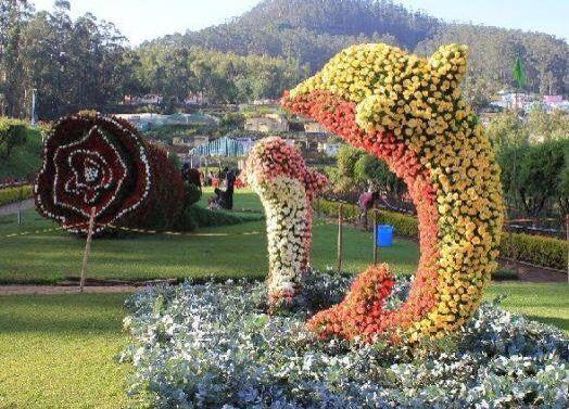 Dolphins garden art