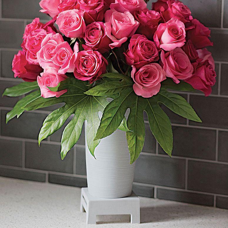 Kulvase Life Extending Flower Vase Pinterest Blooming Flowers