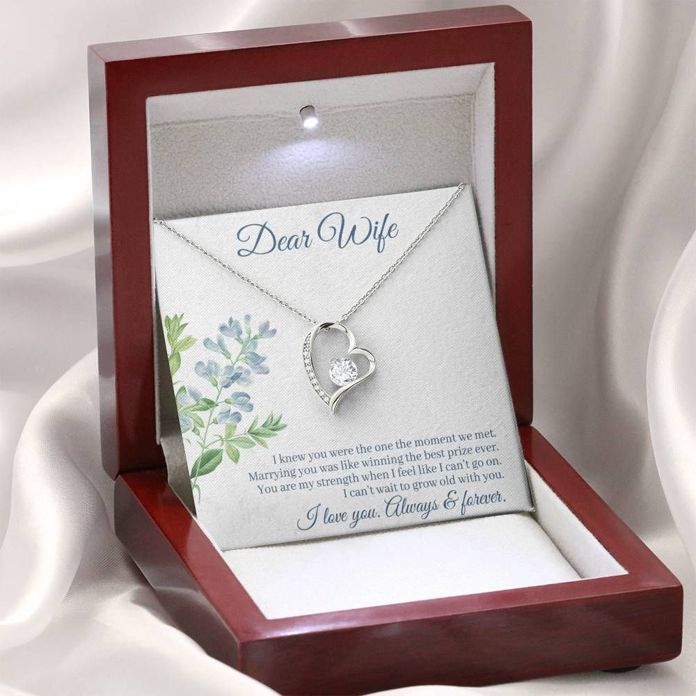 """Give a loving gift that will make her heart melt! This dazzling Forever Love Necklace features a polished heart pendant surrounding a flawless 6.5mm cubic zirconia, embellished with smaller crystals adding extra sparkle and shine. The pendant is crafted in 14K white gold finish and dangles from an adjustable cable chain secured with a lobster clasp.Product Details:• 14K white gold finish• Adjustable cable chain 18"""" - 22""""• 6.5mm round cut cubic zirconia• Height 0.8"""" (2.2cm) Width 0.7"""" (1.8cm)"""