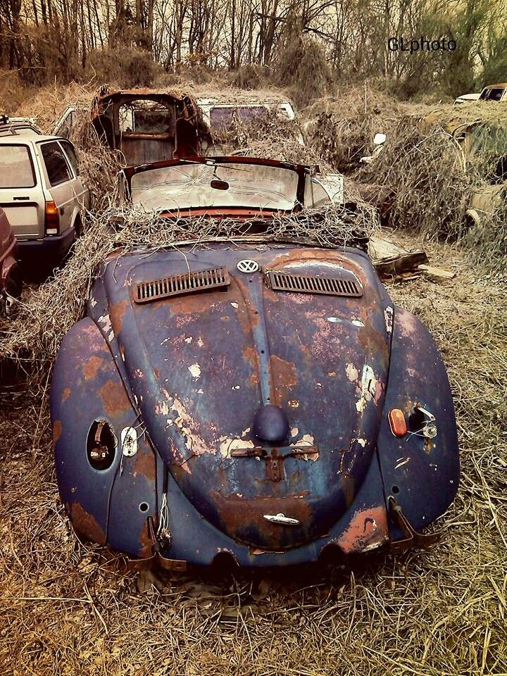 Shot at a local junk yard  | VW Beetle | Vw beetle convertible
