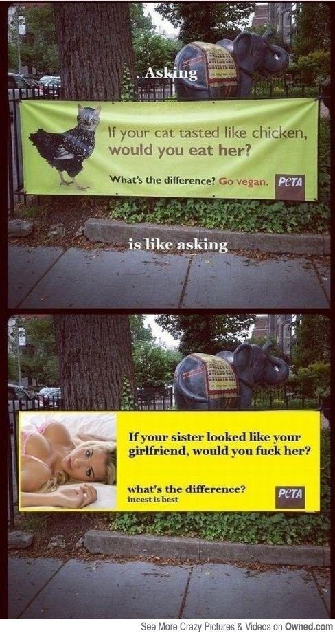 PETA Logic is nonexistent  -