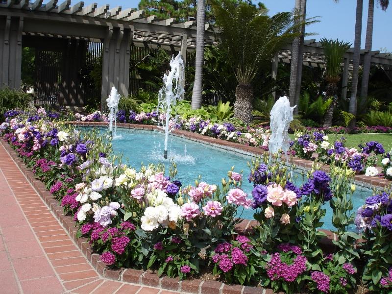 08fdca662f3fcef776ed46f17dd44f6e - Botanical Gardens Corona Del Mar Ca