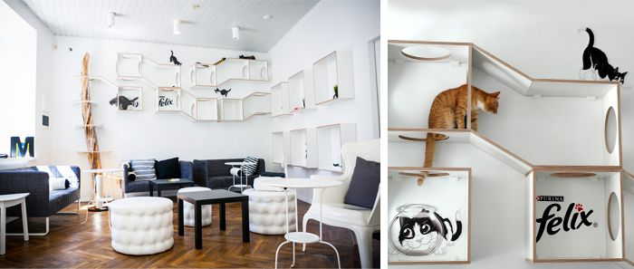 Cat Cafe in Vilnius. I want to go!