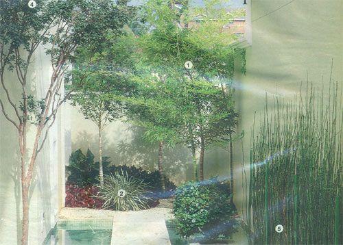 Como fazer um jardim simples e bonito Landscape Pinterest ...