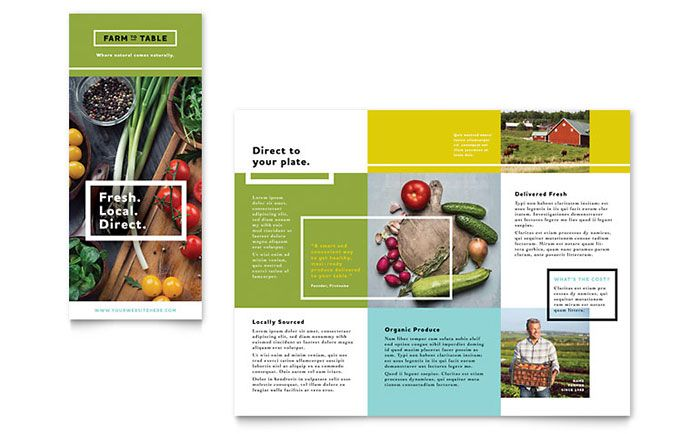 Organic Food Brochure Template Design By StockLayouts