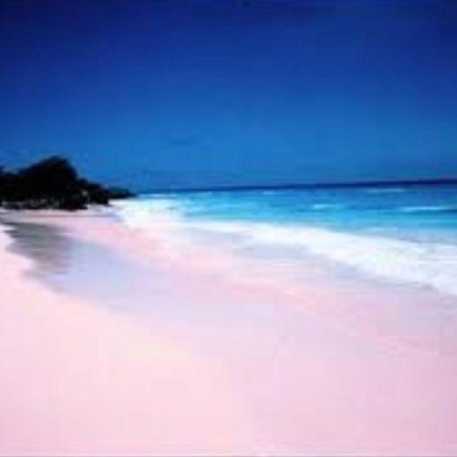 043cb9f633e Bermuda pink sand beach