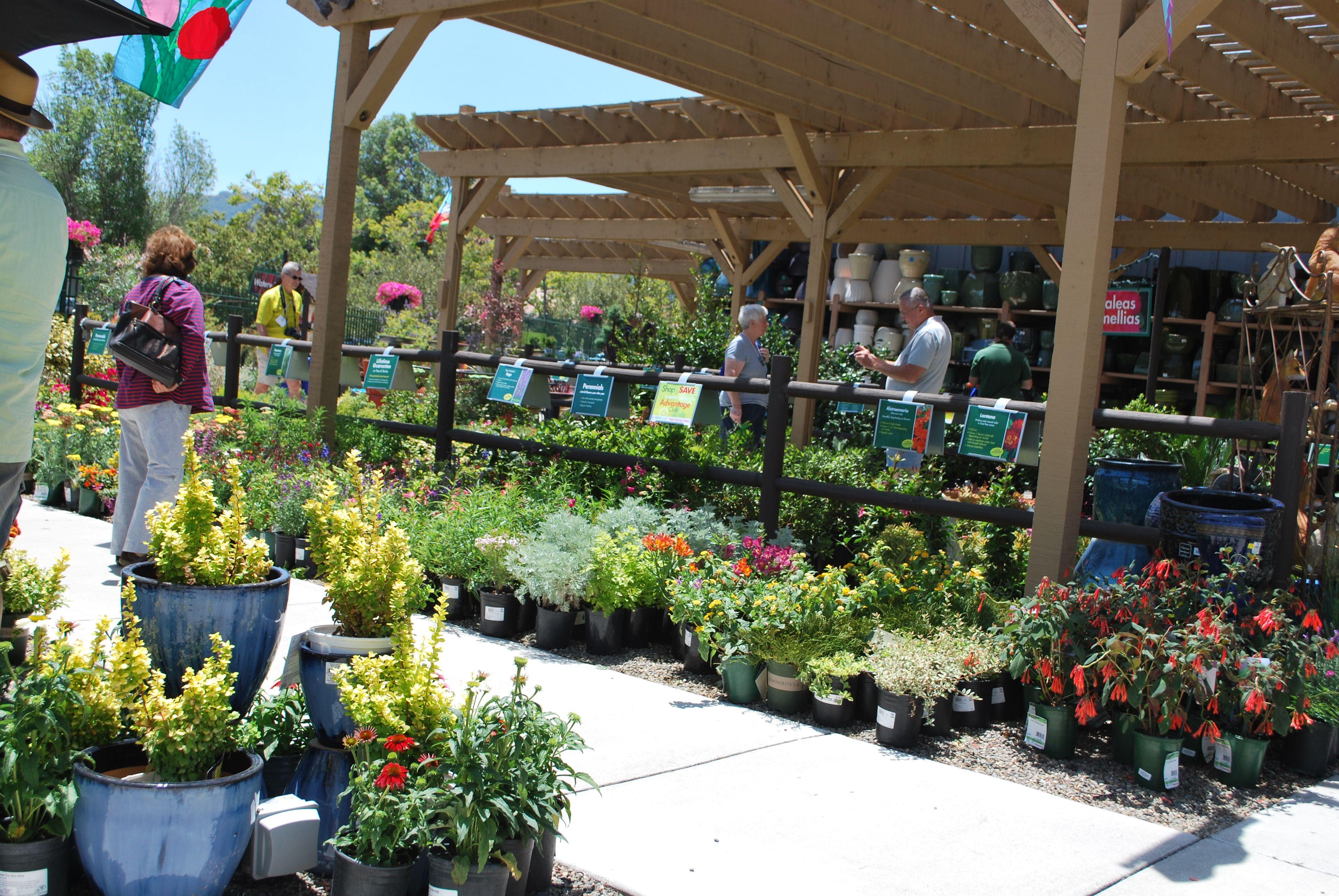 Armstrong Garden Centers Garden Garden Center Summer Tour