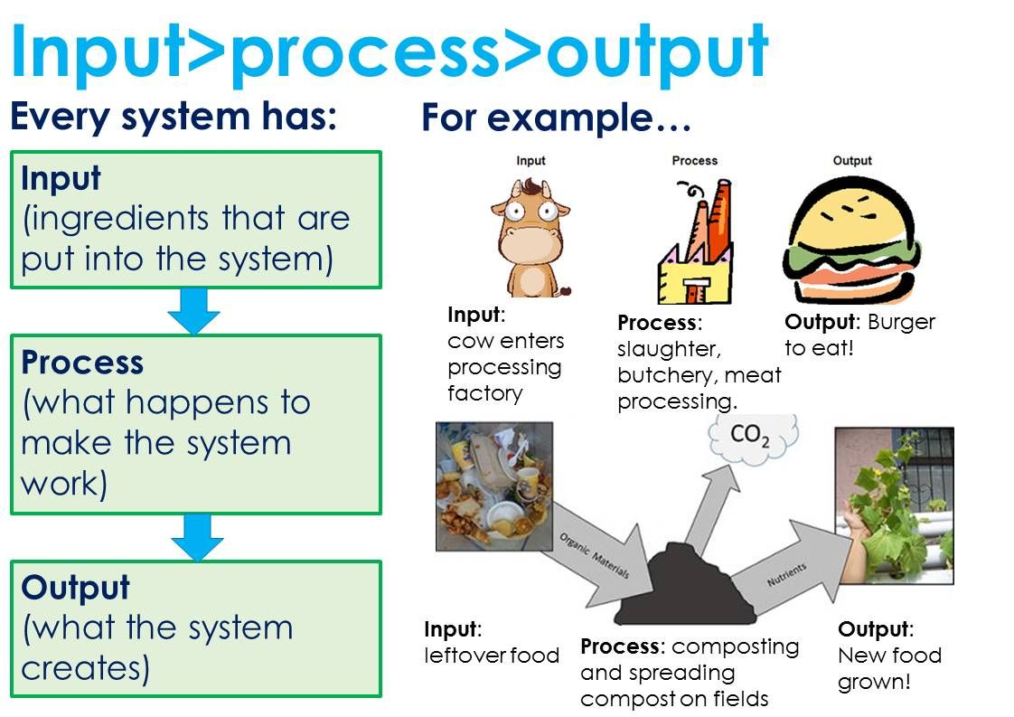 input process output 7th grade science pinterest 7th grade