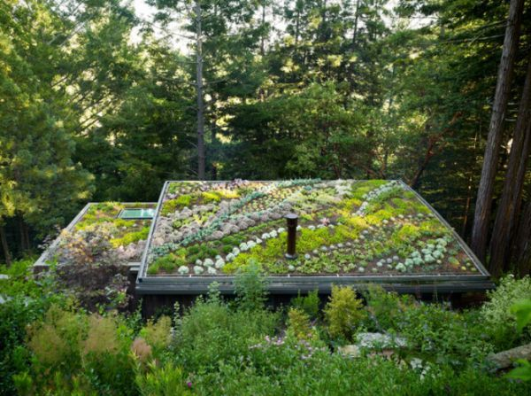 Quite Popular These Days, Green Roofs Are Great For Several Reasons. They  Provide Additional