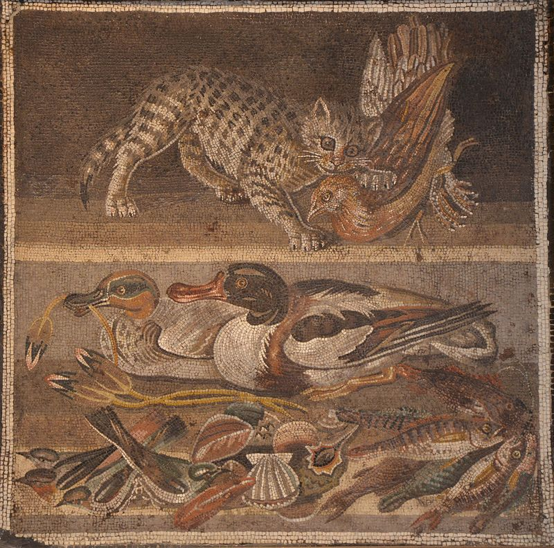 Mosaic depicting a cat with a partridge (above) and ducks, fish & shellfish (below), from the House of the Faun, Pompeii, Naples Archaeological Museum