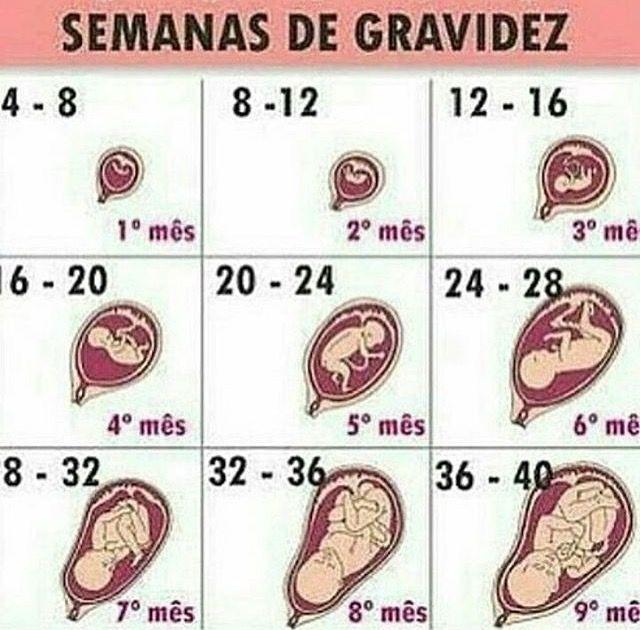 Pin De Yeneit Diaz En Embarazo Consejos Para El Embarazo