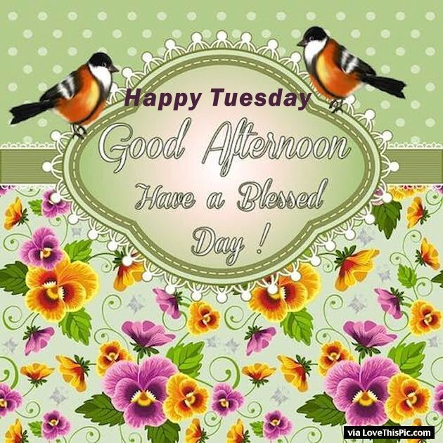 Image result for good day tuesday afternoon