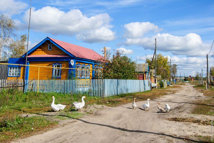 осень в деревне фото - Căutare Google | Разное и Осень