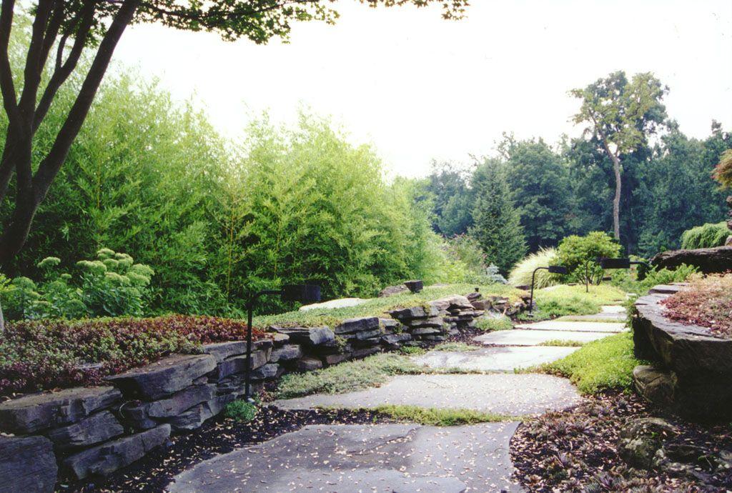 Natural Garden Pathway, Rock Wall U0026 Bamboo Garden In Bergen County, NJ: This