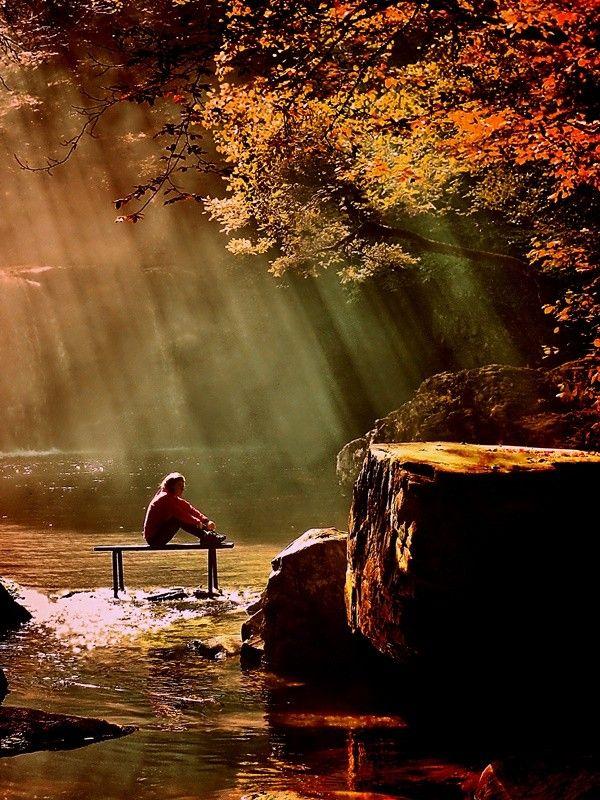 Autumn : Dance of light by Mustafa ILHAN on 500px