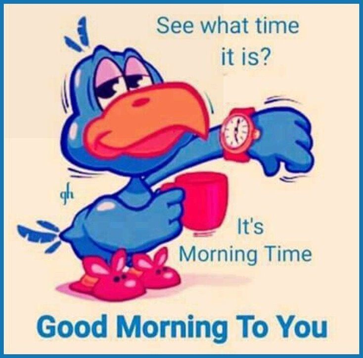 Funny good morning quotes to start the day
