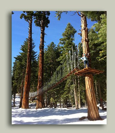 Treetop Adventure Park and Ropes Course - Granlibakken Conference Center & Lodge - Tahoe City, CA