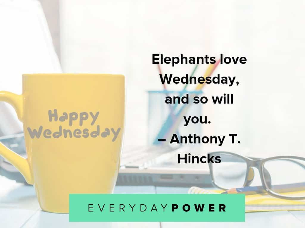 115 Wednesday Quotes For Hump Day Motivation Inspiration Wednesday Quotes Funny Inspirational Quotes Sunday Quotes Funny