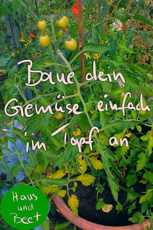 Photo of Gemüse anbauen im Topf für Anfänger – Haus und Beet