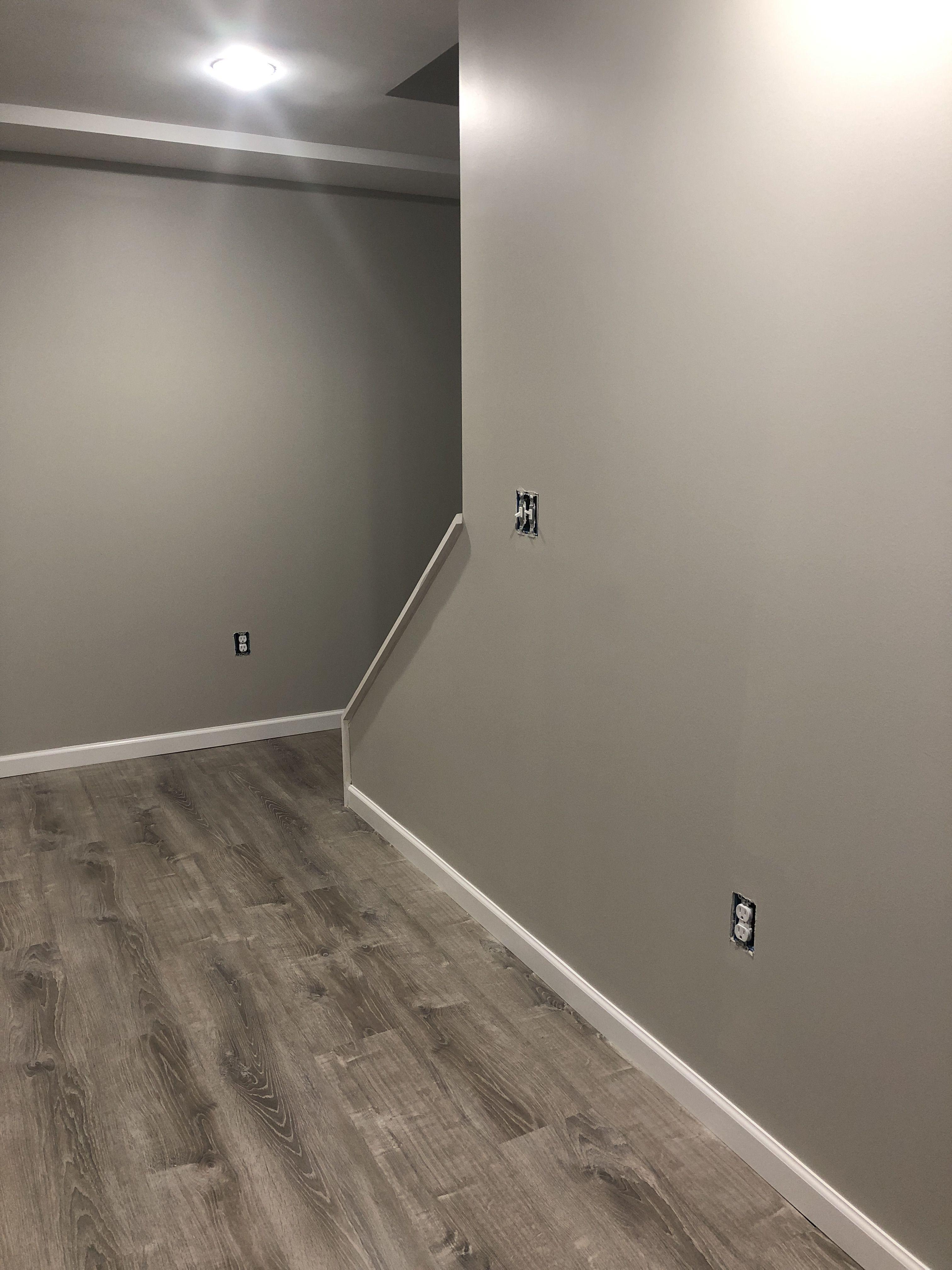 Fresh coat of paint SW Repose Gray Flooring HOme Depot