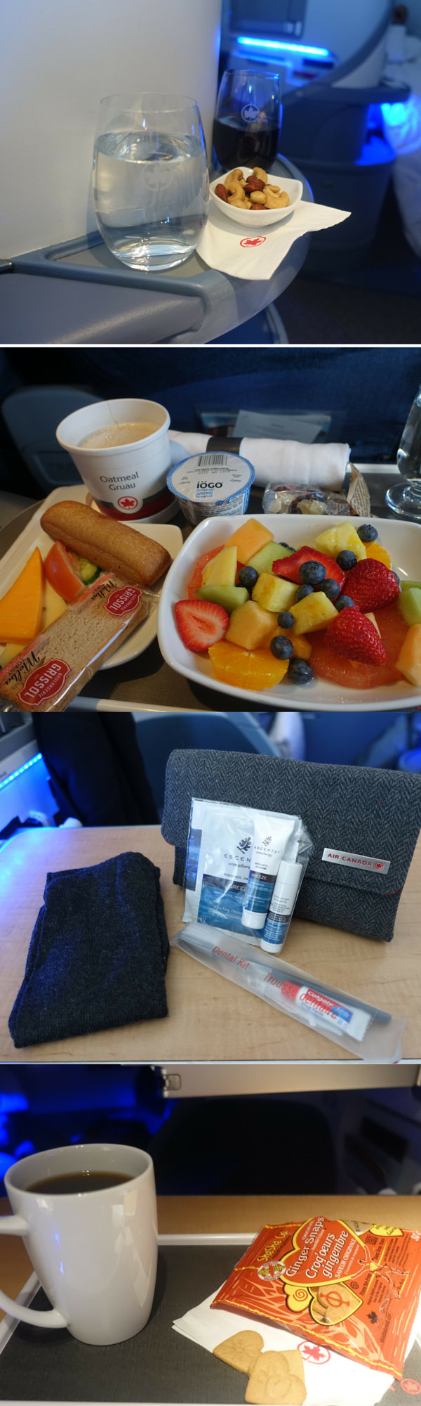 Air Canada Business Class review Canada travel, Travel