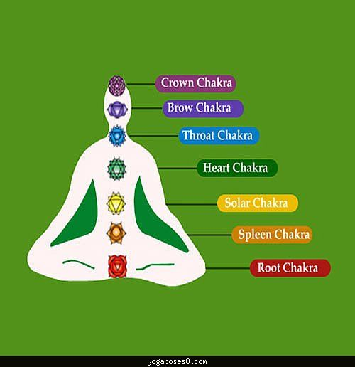 12++ Types of yoga in tamil trends
