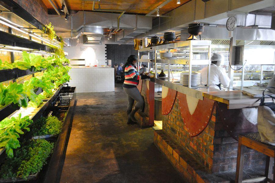moyo restaurant sustainable agriculture meets modern architecture - Farmhouse Restaurant Ideas