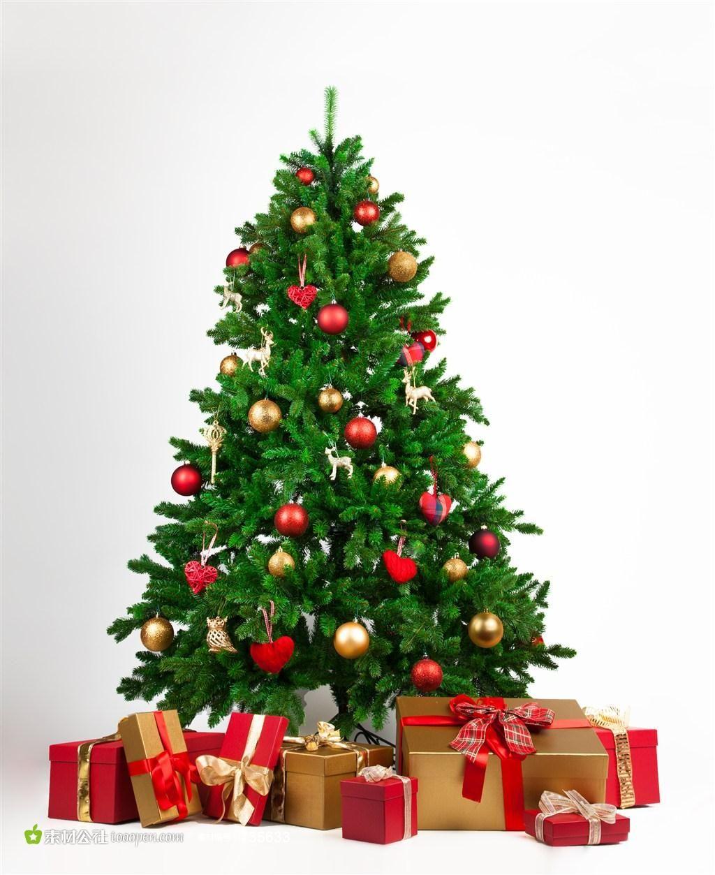 weihnachtsbaum png httpswwwausmalbilderco
