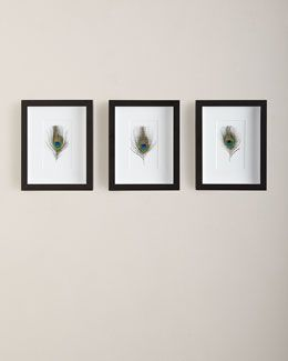 H7YQC Framed Peacock Feathers, 3-Piece Set