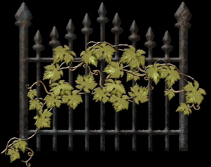 Смешные, открытки с оградами